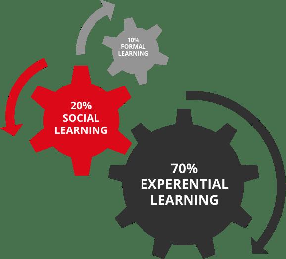 Infografica formazione-academy